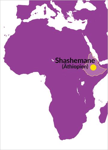 Karte von Afrika mit Hinweis auf Shashemane (Äthiopien)