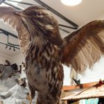 Im Erlebnismuseum Lernort Natur